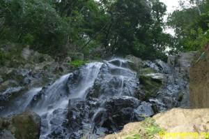 Природа Панамы. Часть №1