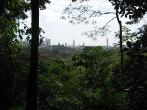 view-of-downtown-panama