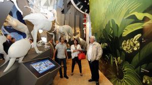 Biomuseo-arquitecto-Frank-Gehry-FotoCortesia_MEDIMA20140130_0100_5